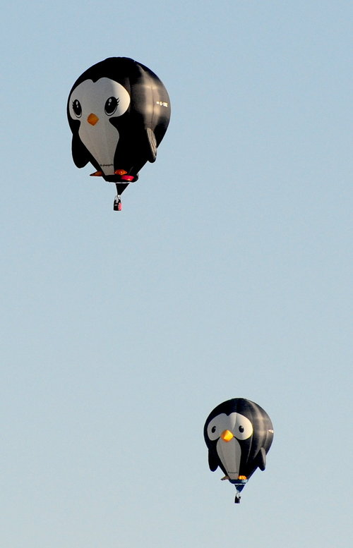 [Hot-Air Balloons In the Shape of Penguins]