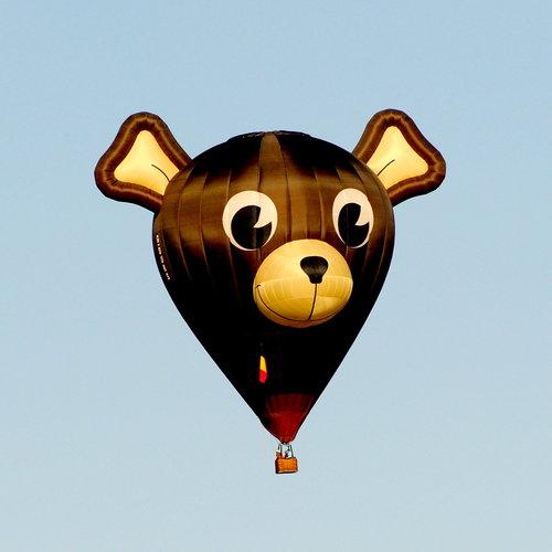 [Teddy Bear Hot-Air Balloon]
