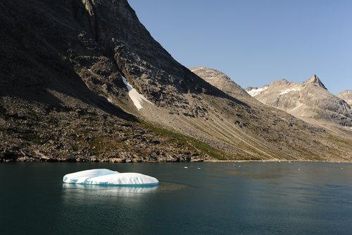 [Iceberg and Rugged Landscape, Prince Christian Sound]