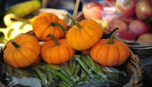 mini pumpkins at farmers market downtown ogden utah