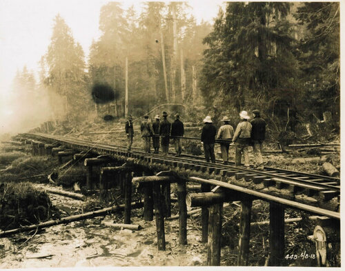 [Spruce Soldiers Building a Railway]