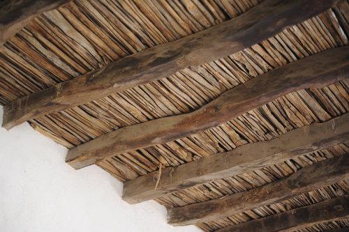 [Interior, Ceiling of Saguaro